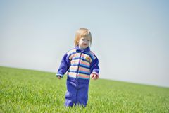 A little girl walks in a field. Royalty Free Stock Photography