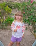 Little girl walks and holds a flower in her hands, outdoors. stock image