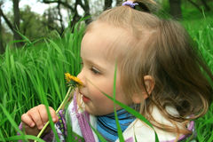 Little girl walks in the spring on a young grass Stock Photos