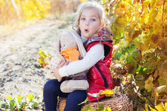Little girl in warm clothes with toy rabbit Royalty Free Stock Images