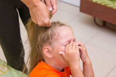 Little girl was crying when she braided long hair Royalty Free Stock Images