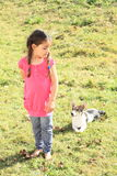 Little girl watching a dog Stock Image