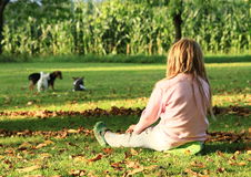 Little girl watching dogs Stock Images