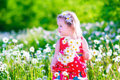 Little girl with water can in a daisy flower field. Royalty Free Stock Photography
