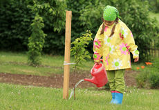 Little girl watering apple tree Royalty Free Stock Photos