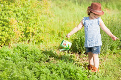 The little girl with the watering can in the garden. Horizontal photo of a toddler girl having fun watering vegetable garden bed stock image
