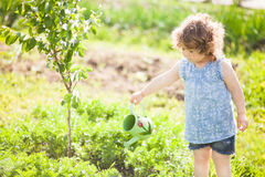 The little girl with the watering can in the garden. Horizontal photo of a toddler girl having fun watering vegetable garden bed stock photos