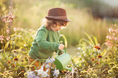 The little girl with the watering can in the garden. Horizontal sunset ligth photo of a toddler girl watering flowers in the garden Royalty Free Stock Photography