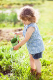 The little girl with the watering can in the garden. Vertical photo of a toddler girl having fun watering vegetable garden bed stock photography