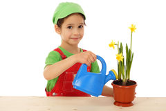 Little girl watering the daffodil Royalty Free Stock Images