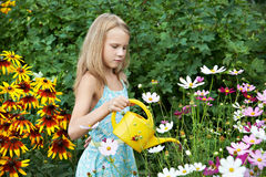 Little girl watering flowers Royalty Free Stock Images