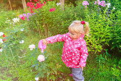 Little girl watering flowers in the garden Stock Photo