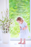 Little girl watering flowers at home Stock Image