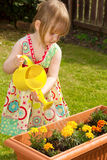 Little girl watering flowers. Little girl wearing a bright floral dress watering flowers with a yellow can Stock Photos