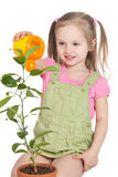 Little girl watering the plant Stock Images