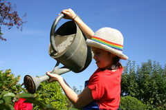 Little girl watering plants Royalty Free Stock Photos