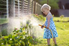 Little girl watering plants in the garden Royalty Free Stock Photography