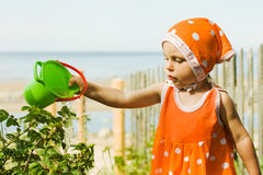 Little girl watering plants with water Stock Images