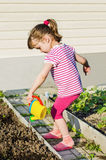 Little girl watering plants from a watering can Stock Photos