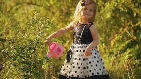 Little girl watering a tree. On a background of green foliage stock video footage