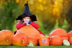 Little girl wearing halloween costume on a pumpkin patch Royalty Free Stock Photos