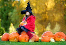 Little girl wearing halloween costume on a pumpkin patch Stock Photography