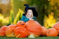Little girl wearing halloween costume on a pumpkin patch Stock Photos