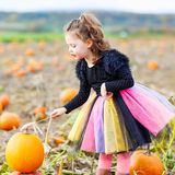 Little girl wearing halloween witch costume on pumpkin patch Royalty Free Stock Image