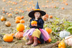 Little girl wearing halloween witch costume on pumpkin patch Stock Image