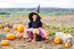 Little girl wearing halloween witch costume on pumpkin patch Stock Images