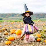 Little girl wearing halloween witch costume on pumpkin patch Stock Photography