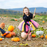 Little girl wearing halloween witch costume on pumpkin patch Stock Photo