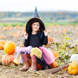 Little girl wearing halloween witch costume on pumpkin patch. Lovely little kid girl wearing halloween witch costume having fun on a pumpkin patch. Traditional Royalty Free Stock Photo