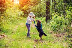 Little girl schooling dog in the forest. Little girl wearing sun hat schooling dog outdoor in a forest stock photos