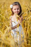 Little girl among wheat ears Royalty Free Stock Images