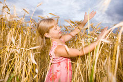 Little girl in a wheat field Royalty Free Stock Images