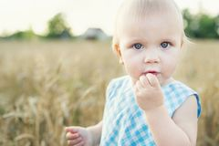Little girl in wheat field. healthy child on picnic with bread and milk in golden cereal field. Summer beautiful young daughter family love happiness nature royalty free stock image