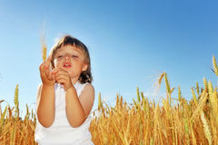 Little girl  on a wheat field holding wheat Stock Photos
