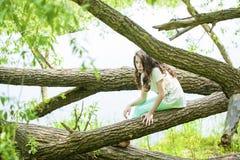 Little girl in white dress sitting on tree trunk over green gras stock