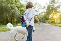 Little girl with a white husky dog walking down the road in the park. Stock Photos