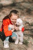 Little girl with a white puppy. A puppy in the hands of a girl. Little smiling girl having fun with puppy outdoors in the park royalty free stock photography