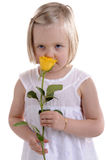 Little girl in white smelling yellow rose Royalty Free Stock Photos