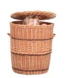 Little girl in wicker box royalty free stock image