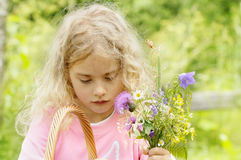 Little girl with the wild flowers Stock Image