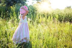 Little Girl, Wildflowers, Meadow Stock Photos