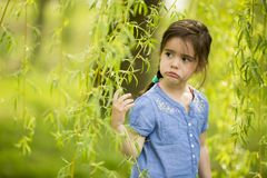 Little girl by willow at spring Stock Photography