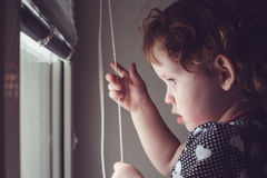 Little girl on the window blinds open. Royalty Free Stock Image