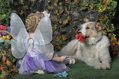 Little girl with wings and a dog Stock Images