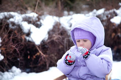 Little girl in a winter park on a sled Stock Photography