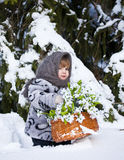 Little girl in a winter wood with the big basket of snowdrops Stock Image